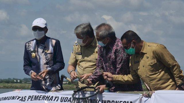 Gubernur Sulsel Nurdin Abdullah panen udang sitto di Kabupaten Pinrang