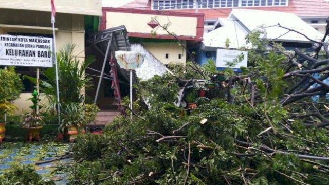 Hujan Disertai Angin Kencang, Pohon Tumbang di Samping Rujab Gubernur Sulsel