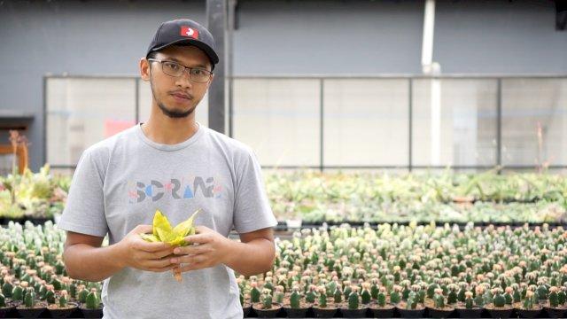 Aldy Ridwan, anak muda petani kaktus.