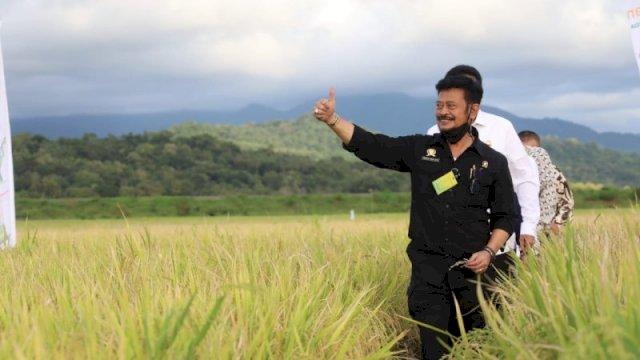 Sepanjang Tahun 2021, NTP Stabil Tinggi Tanda Kesejahteraan Petani Membaik
