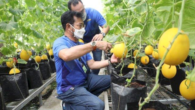 Mentan SYL dan Menkop UKM Gandeng IPB Wujudkan Korporatisasi Sektor Pertanian