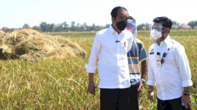 Jokowi Cek Gudang Beras, Mentan Syahrul: Sesuai Perintah Presiden Kondisi Beras Kita Aman
