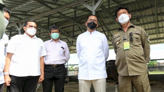 Jelang Idul Adha, Mentan Syahrul Bersama Wali Kota Danny Tinjau Kesiapan Hewan Kurban