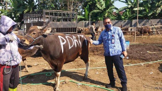 Direktur Keuangan Perumda Air Minum Kota Makassar Asdar Ali saat mengunjungi RPH di Manggala, Makassar