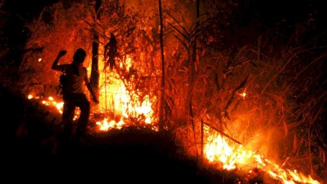 Waspada! Sembilan Hektare lahan Hutan Gunung Andong Hangus Terbakar