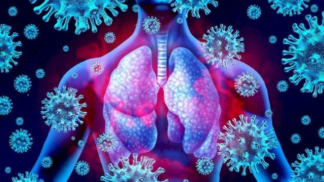 Studi Michigan: Terinfeksi Covid-19 Ringan, Bisa Hasilkan Antibodi Berbulan-bulan